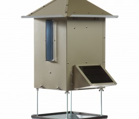 Bird Bistro – Automatic Bird Feeder