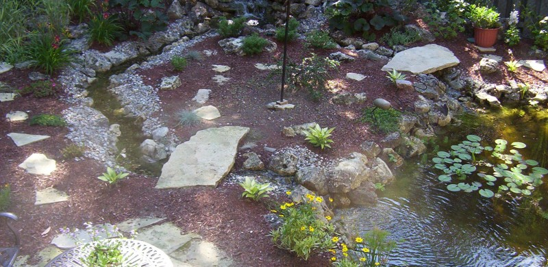 large backyard pond