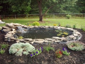 5 completely unique koi pond designs sweeney feeders for Ultimate koi pond design