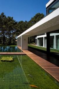 Clean and modern koi pond design. (Photo courtesy of freshhome.com)