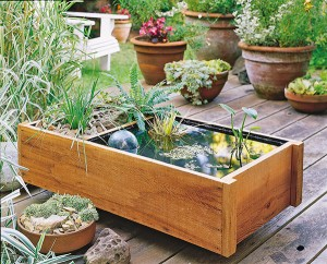 Pond in a Box. A great, decorative space-saver! (Photo courtesy of gardenmediagroup.com)